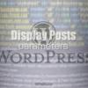Display Postsのパラメータ一覧!任意の記事の呼び出し表示!newsで使うプラグイン用